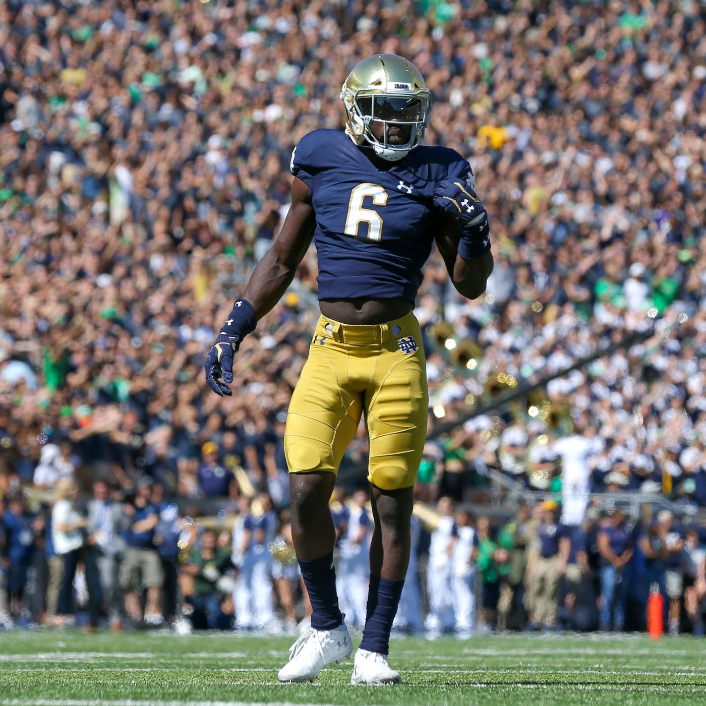 Notre dame navy betting line i horse betting cheats