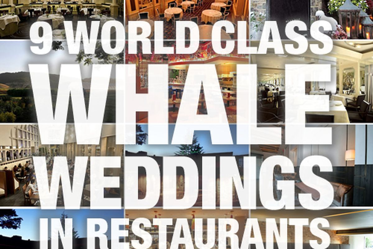 Whale Weddings 9 World Class Restaurants For Your Big Expensive