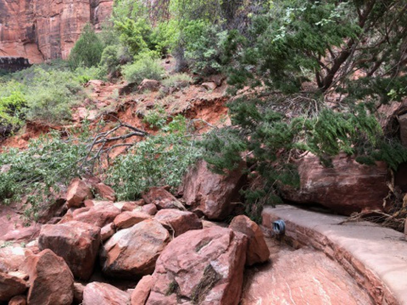 Kayenta Trail in Zion National Park reopened