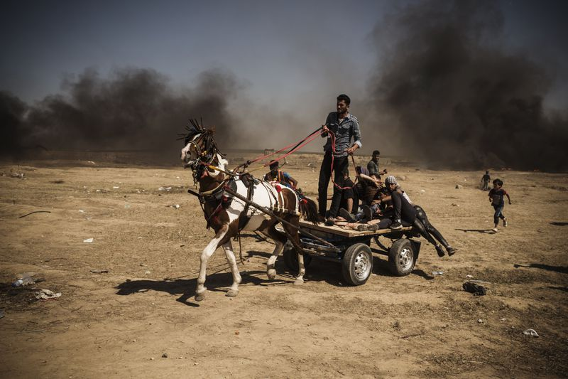 A wounded Palestinian is rushed on a horse cart to an ambulance at the border fence.
