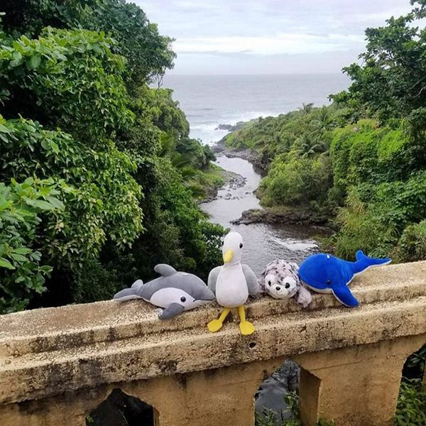 Four shore buddies (A whale, a dolphin, a seagull, and a seal) lined up on a bridge overlooking a river leading out to sea