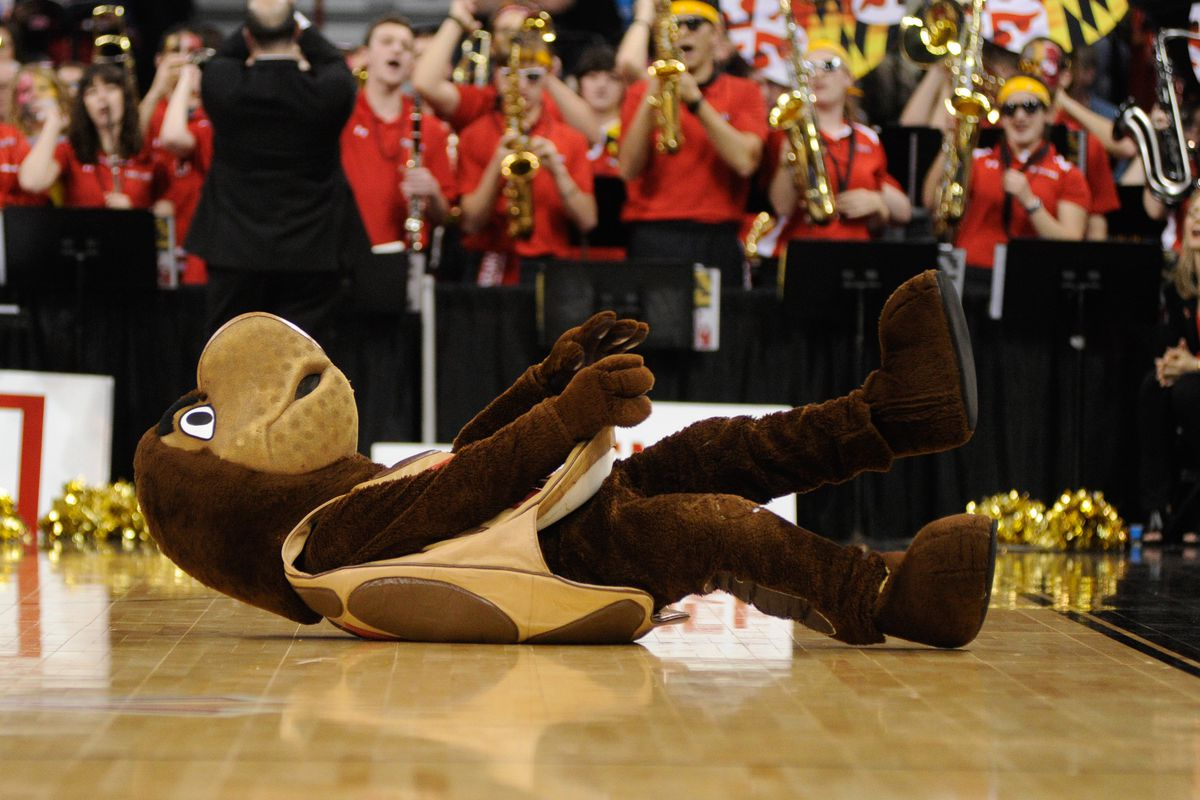 Gonna need someone to help the Maryland mascot.