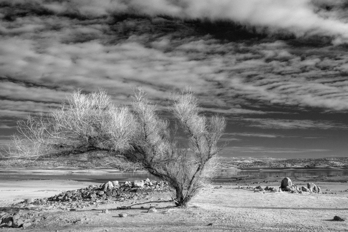 Drought in Folsom