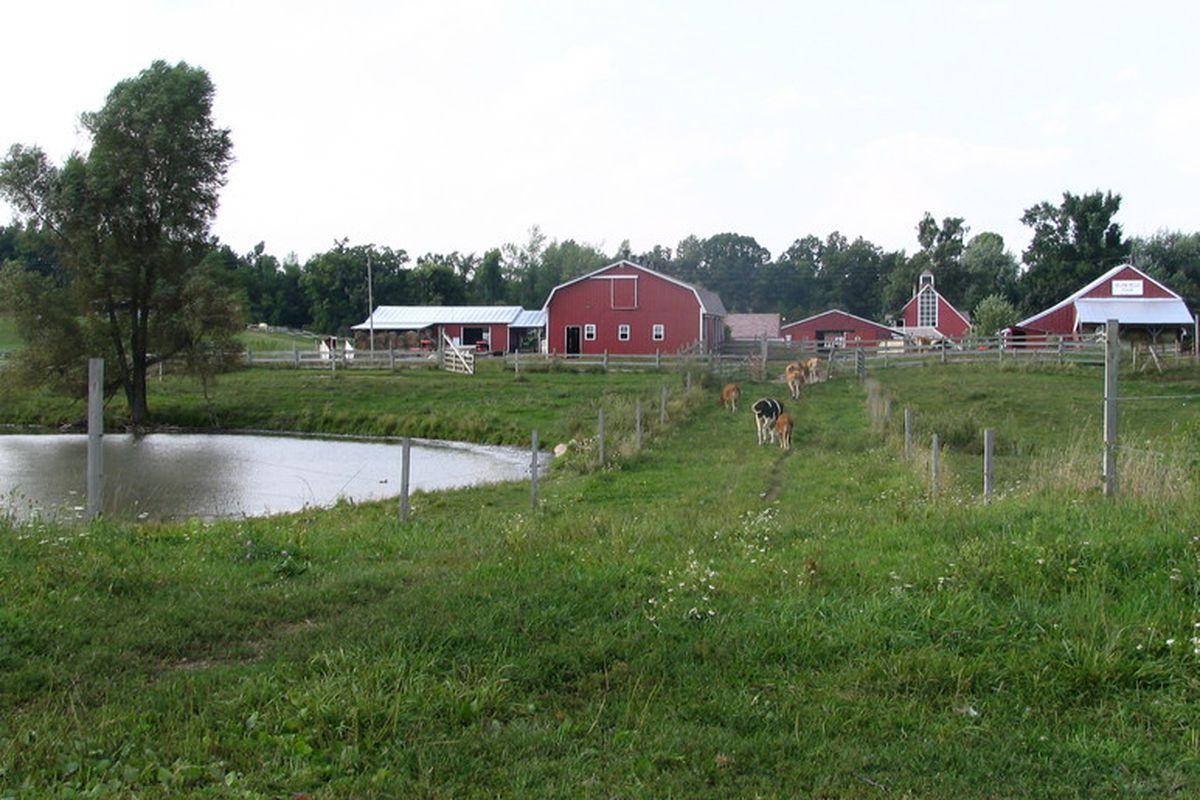 Upland Hills Farm.