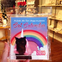 """""""The World's Most Amazing Super Awesome Cat Calendar"""" ($20) is 12 months of the artist's cat dressed up in really elaborate, themed costumes, sitting on a handmade little backdrop, looking intensely pissed off. Personally, I'm a dog person, but even I lov"""
