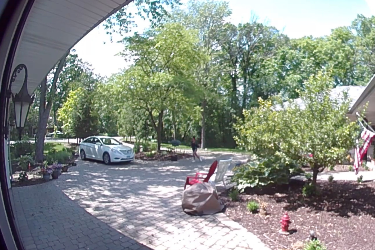 Police looking for woman who tried to steal tree in Palos Park