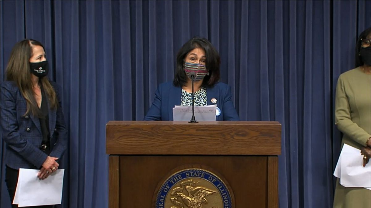 State Rep. Lisa Hernandez, D-Cicero, speaks at a news conference in Springfield in May.