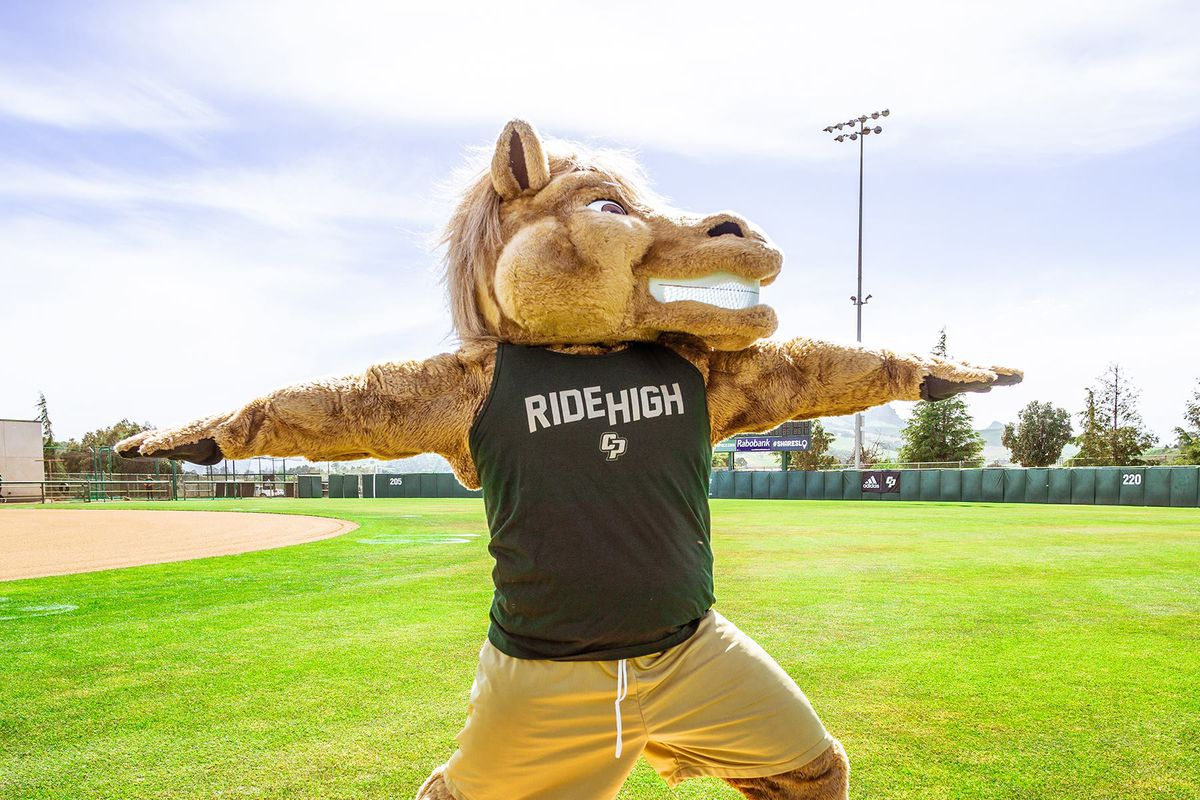 Cal Poly's Musty The Mustang mascot