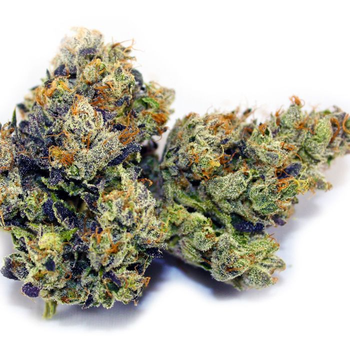 Here are 5 of the best marijuana strains in Illinois
