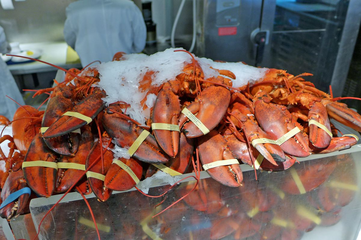 """<span data-author=""""-1"""">Whole lobster at the Lobster Place</span>"""