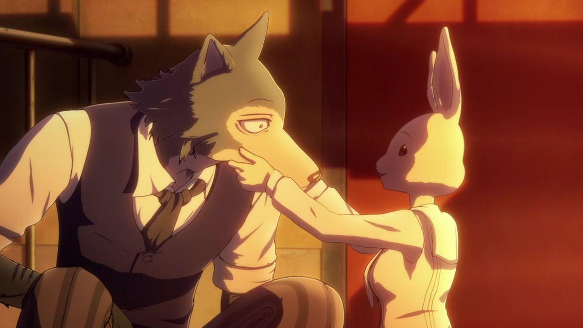 Haru the dwarf rabbit holds Legoshi the gray wolf's face in Beastars Season 2.