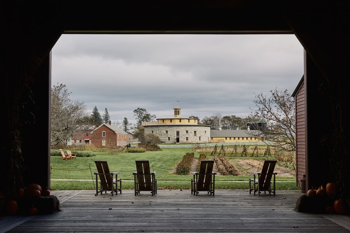 Four chairs facing a field and buildings.