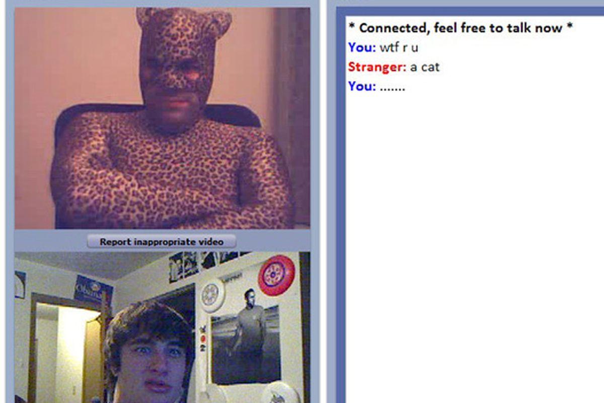 """The infamous ChatCat, via <a href=""""http://imagechan.com/img/7819/Chat%20Roulette%20Cat/"""">Imagechan</a>"""