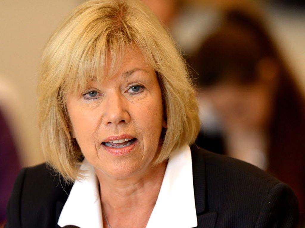 Sen. Julie Morrison, D-Deerfield. | Sun-Times files