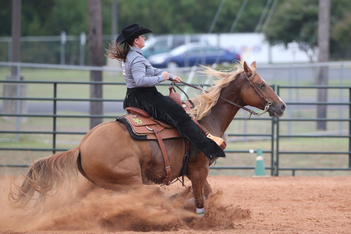 Michelina Carbone competing in reining for Baylor Equestrian