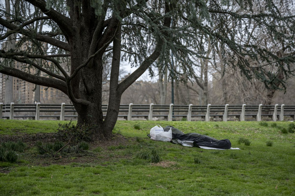 A homeless person sleeping under a tree in Central Park. They keep warm in the sub 40º degree temperature in their insulated sleeping bag.