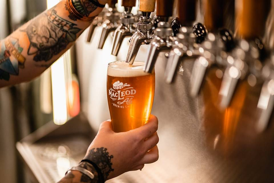 A golden pint being poured at MacLeod Ale.