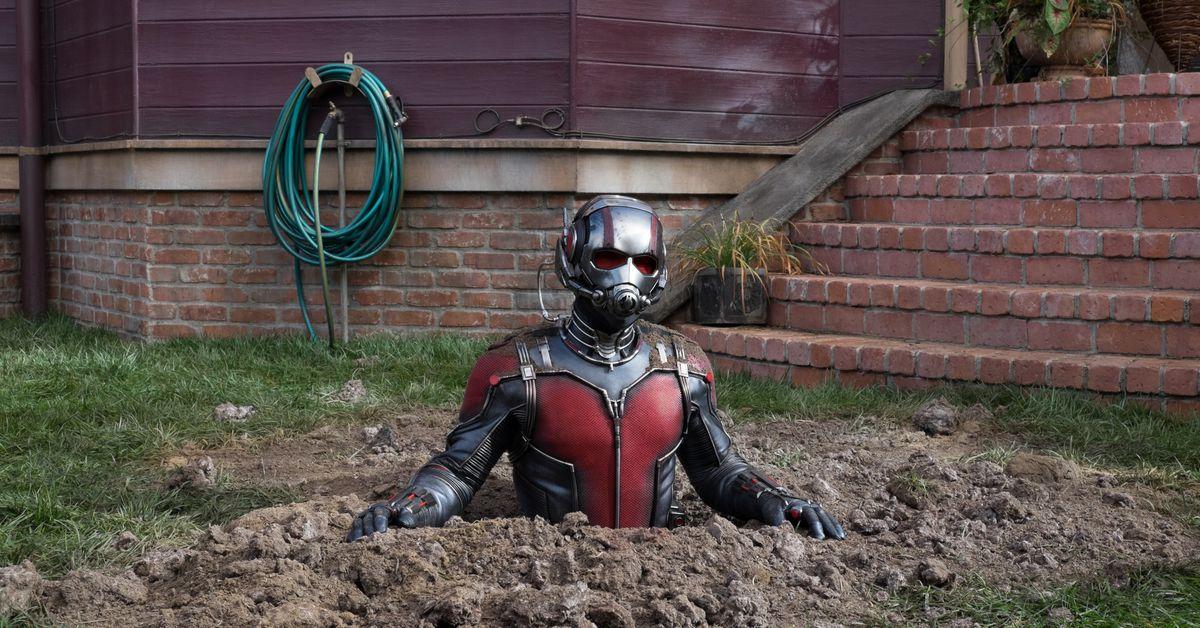 Avengers Endgame Theory Ant Man Kills Thanos By