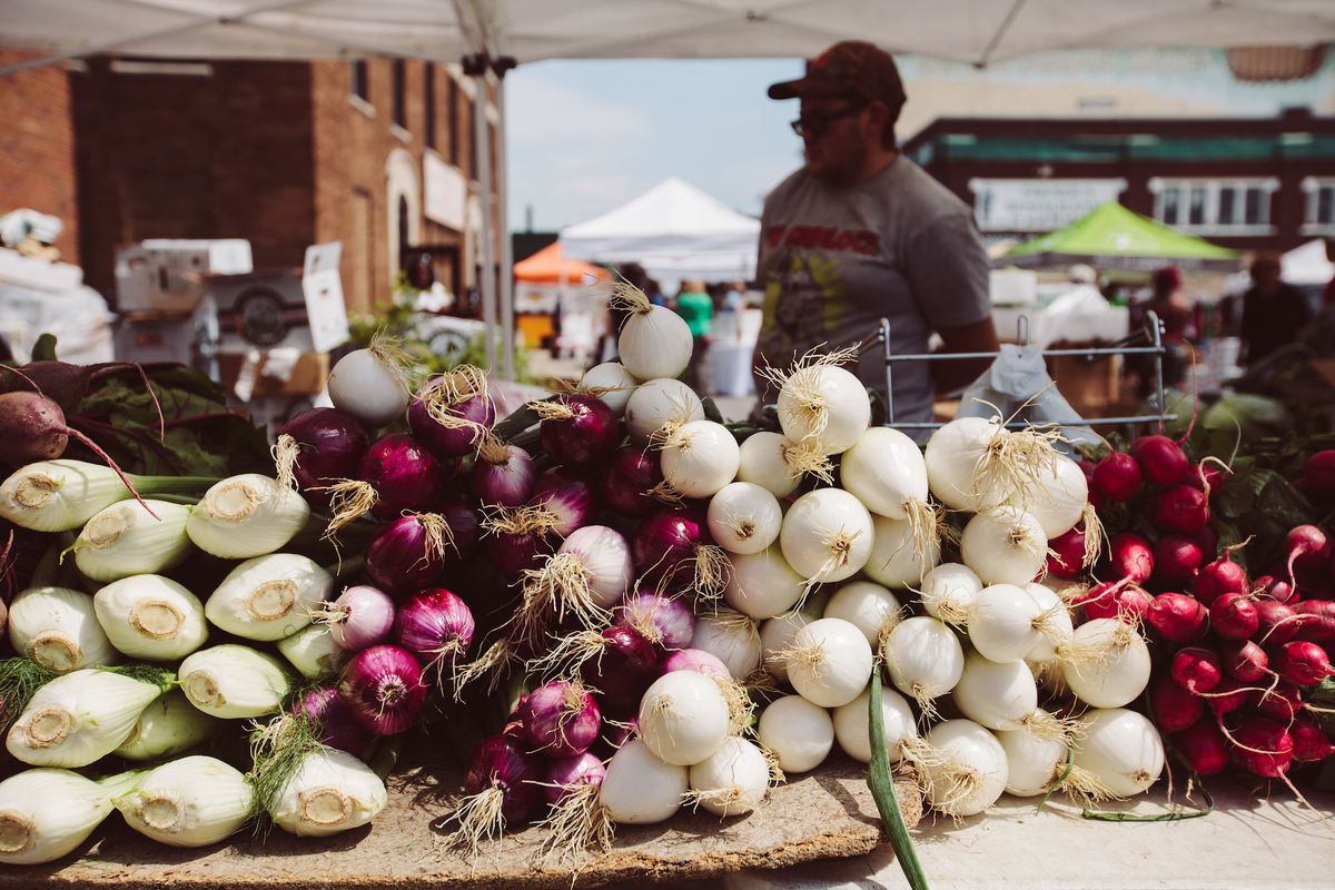 Fennel, red and white onions, and radishes stacked neatly at a stand at Eastern Market.
