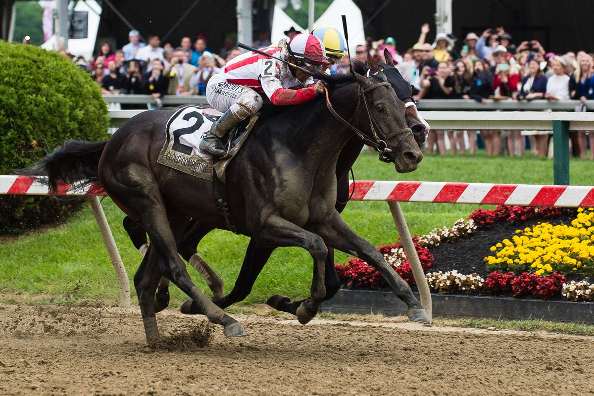 Classic Empire is out of the Belmont Stakes