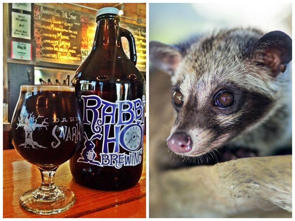 Civet Beer