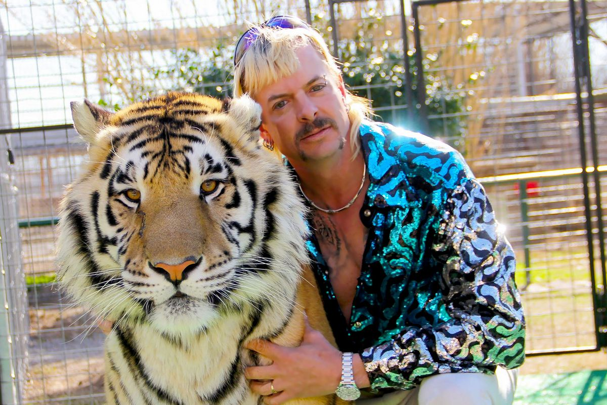 A man with a flashy blue sequined shirt crouches low, embracing a tiger and looking at the camera.