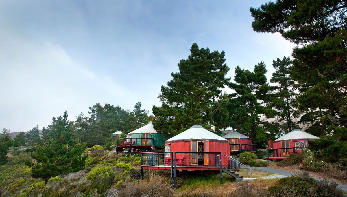 A group of red yurts in a forest in California.