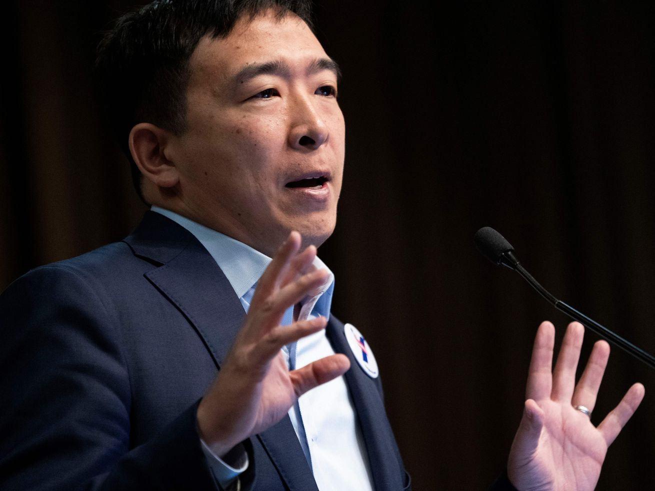Democratic Presidential candidate Andrew Yang speaks during a gathering of the National Action Network on April 3, 2019 in New York.