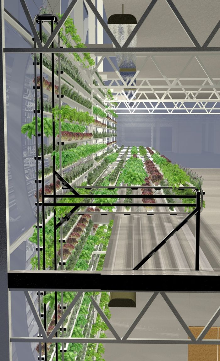 Vertical farm can make 44,000 pounds of tomatoes on the side