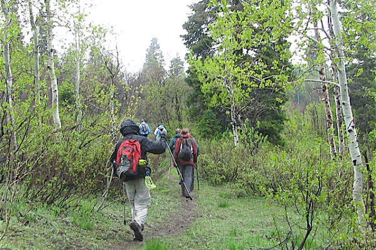 Hikers on the Great Western Trail.