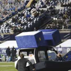 Cosmo does a stunt in Provo on Saturday, Oct. 24, 2020.