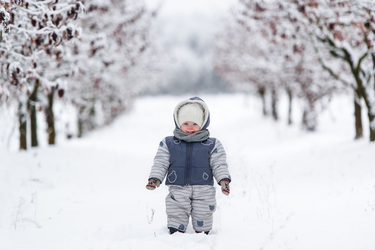 A small child dressed in warm layers standing in a snowy lane between snow-covered trees.