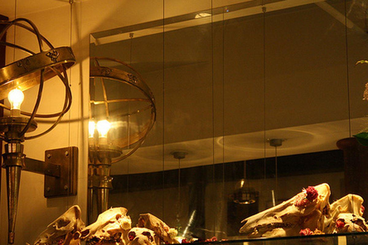The display of skulls at Bar Tartine.