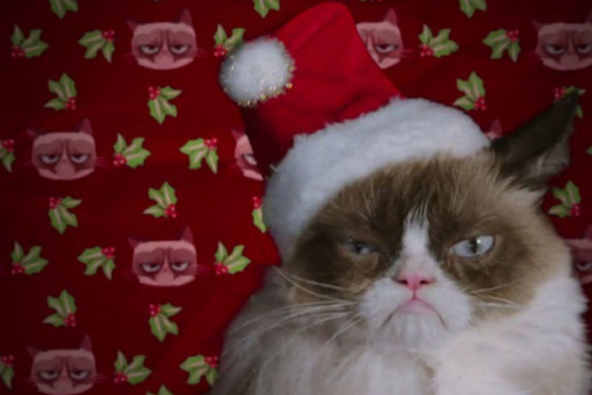 "Image via <a href=""http://www.mylifetime.com/movies/grumpy-cats-worst-christmas-ever"">Lifetime</a>"