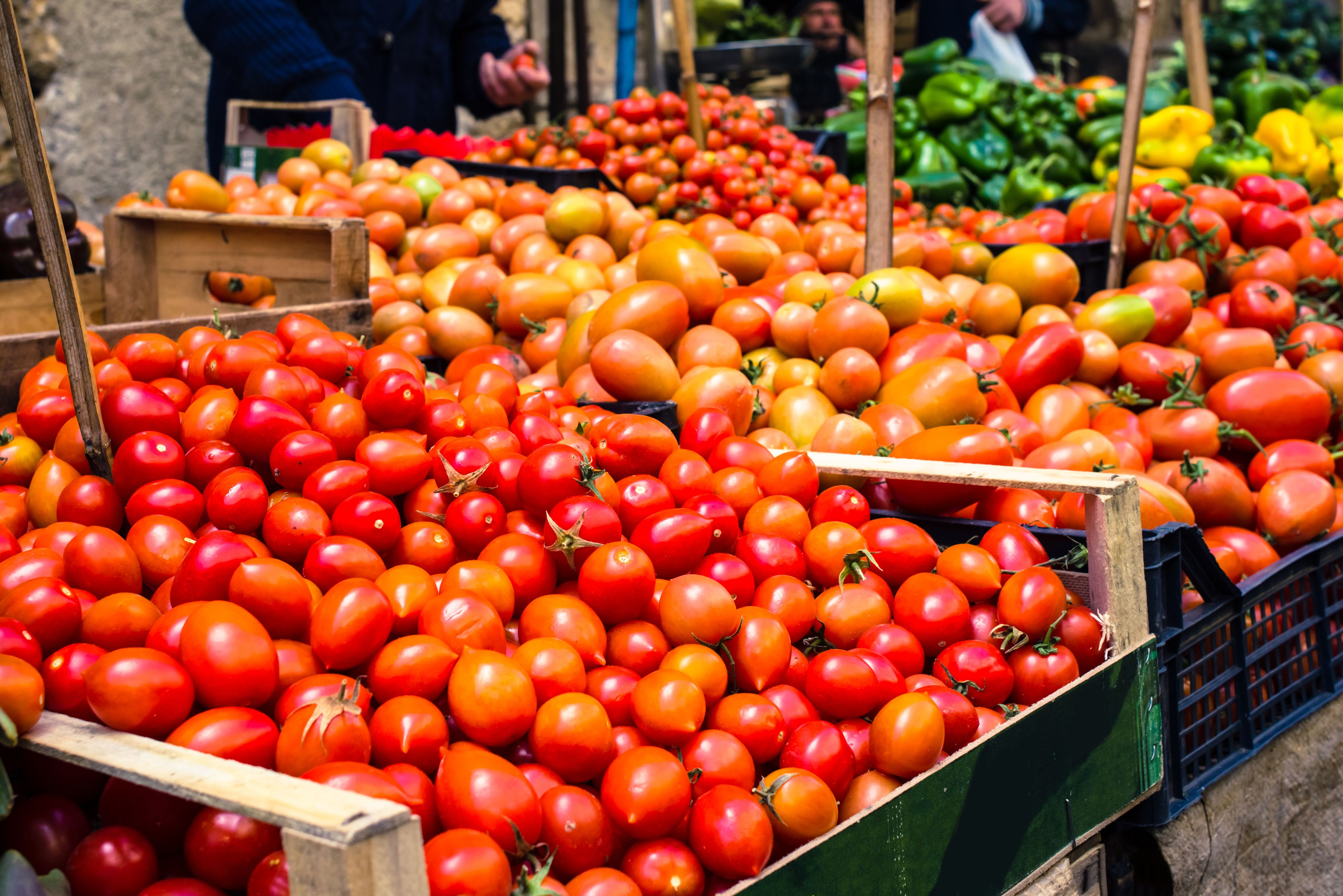 why fruits and vegetables taste better in europe vox