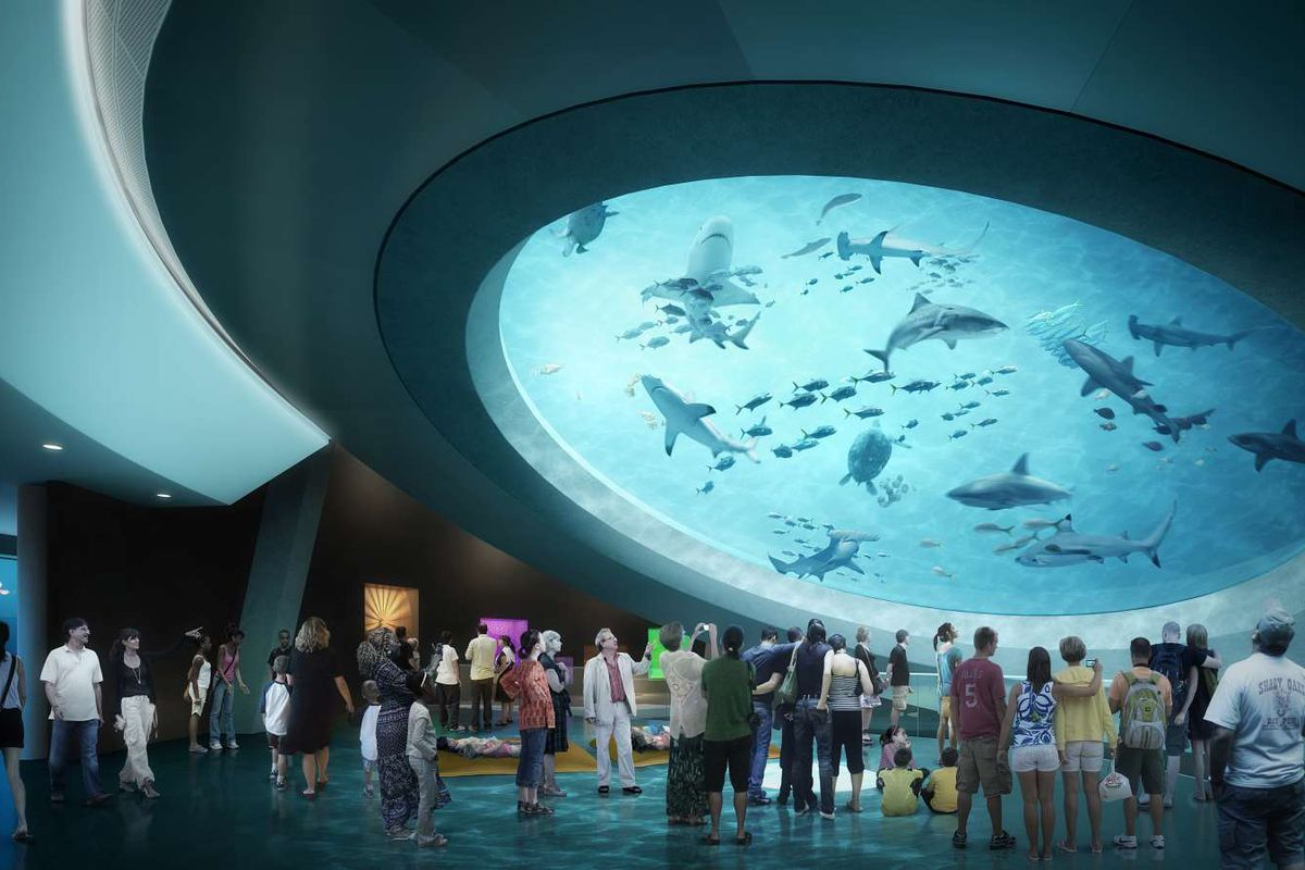 Rendering of the Frost Musuem of Science showing a tank of sharks