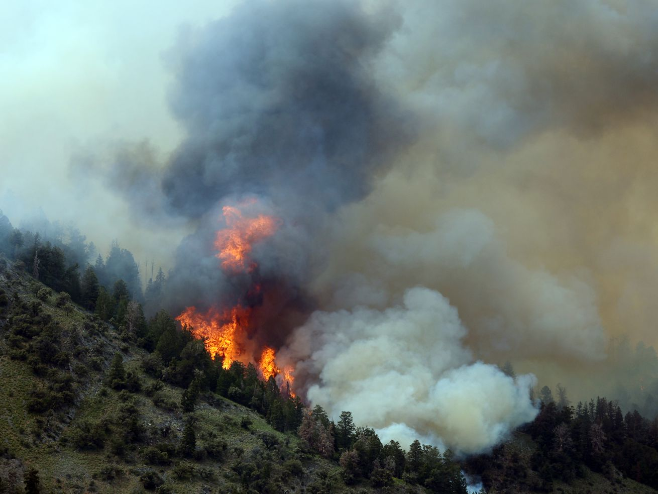Why summer 2021 is looking hot, dry and flammable