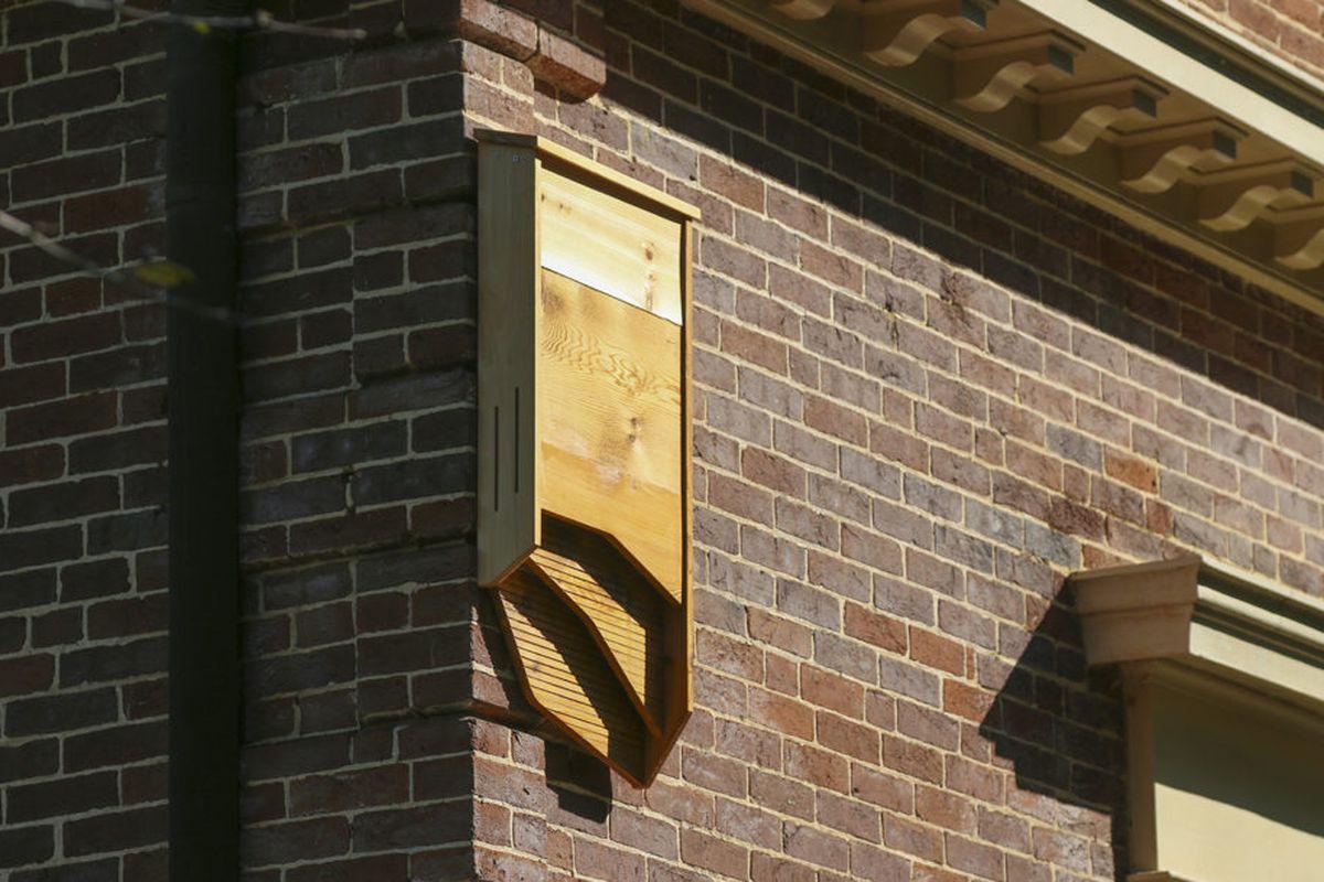 Batbnb Brings Designer Housing To Flying Mammals