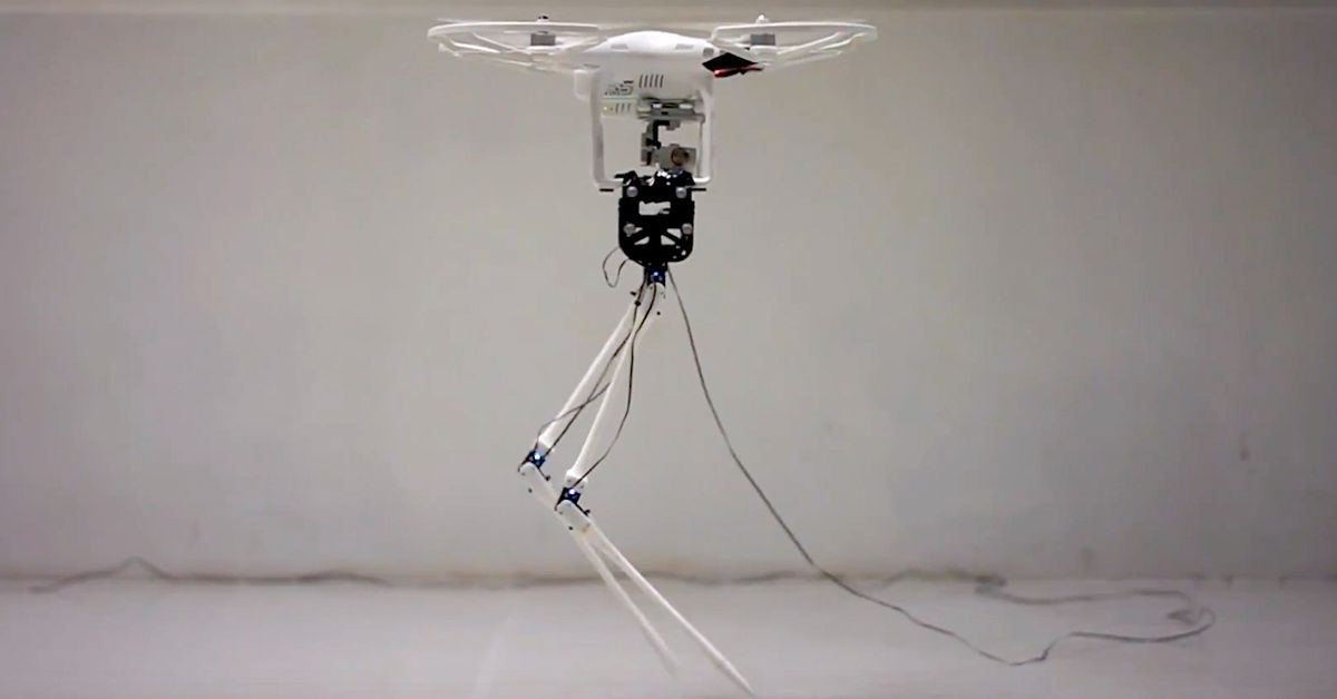 A Helicopter for a Head Helps this Bipedal Robot Walk with Confidence