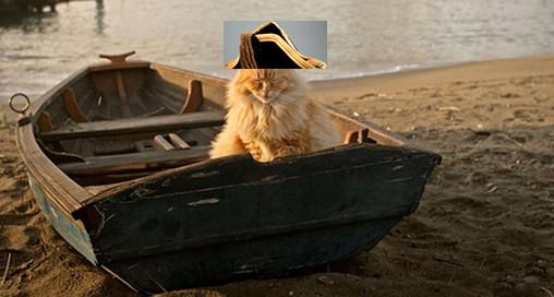 admiral snugglesworth