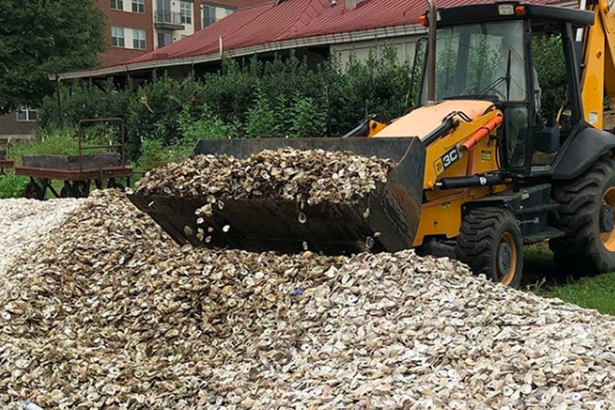 Backhoe removing oyster shells from Kimball House