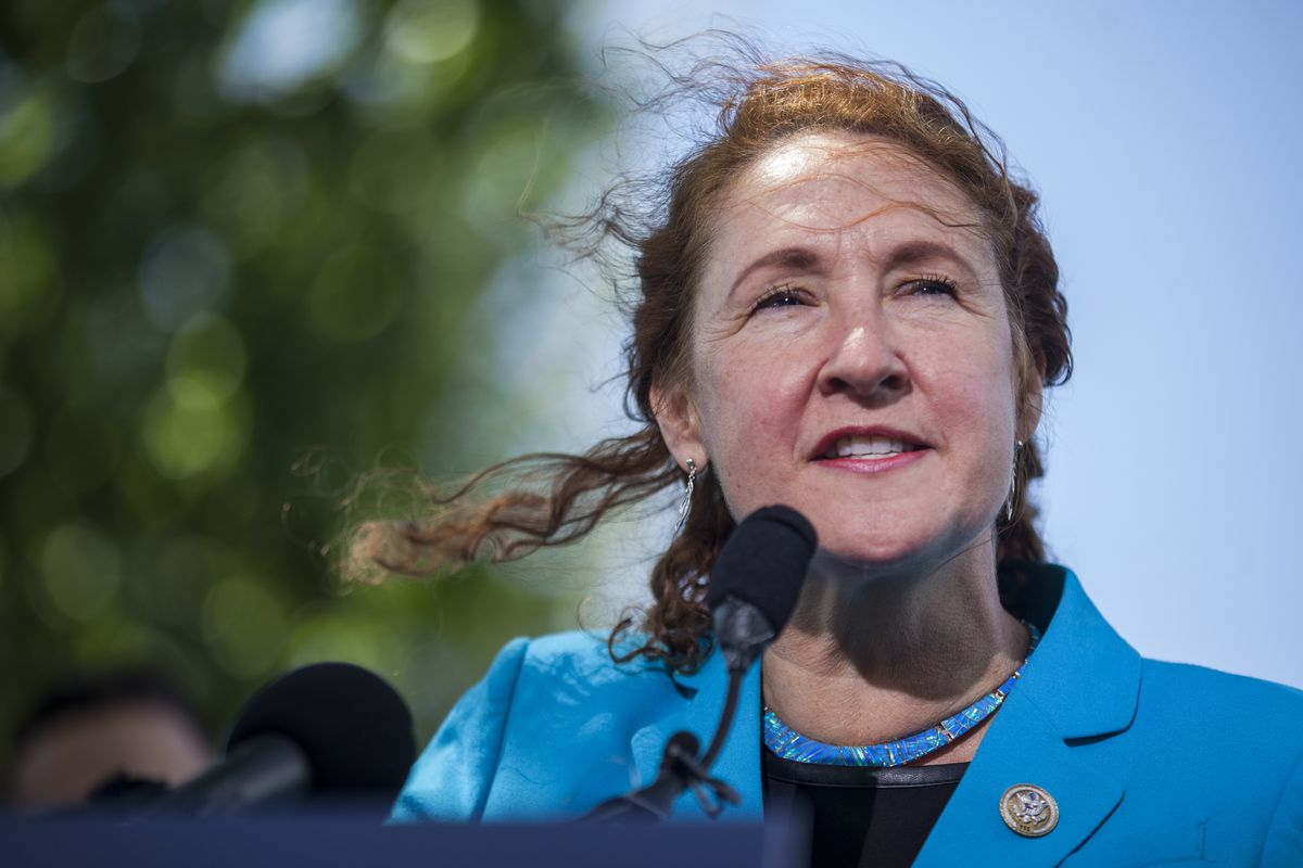 Congressional Democrats And Gun Safety Advocates Holds News Conference