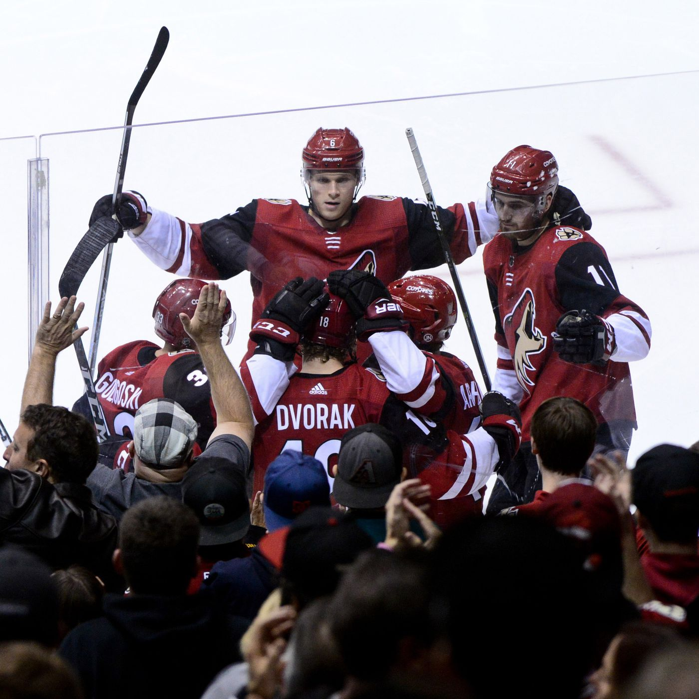 promo code c207c 7e455 Coyotes lower the Capitals, gift fans with a win - Five For ...