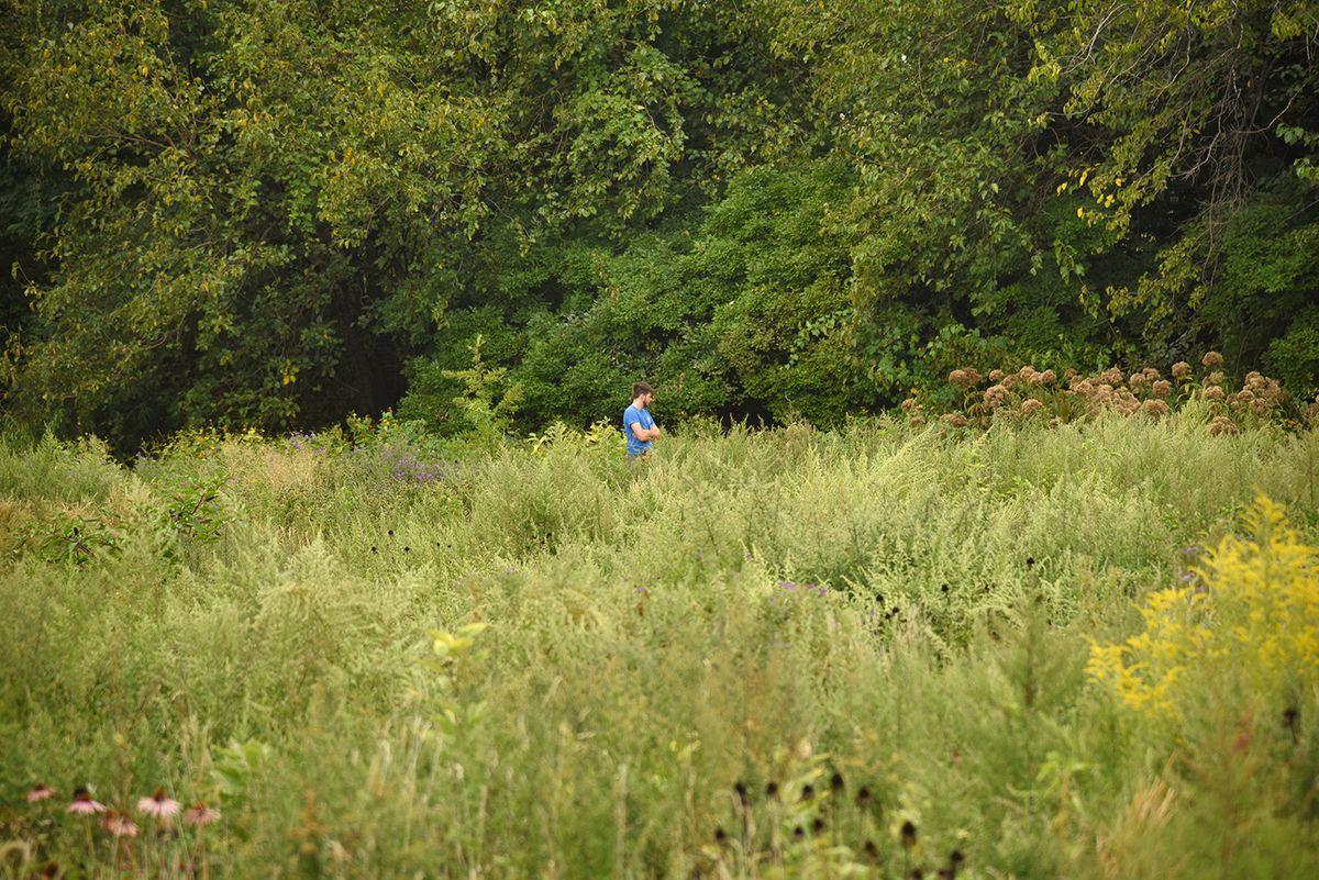 A man standing in a field of tall grass.