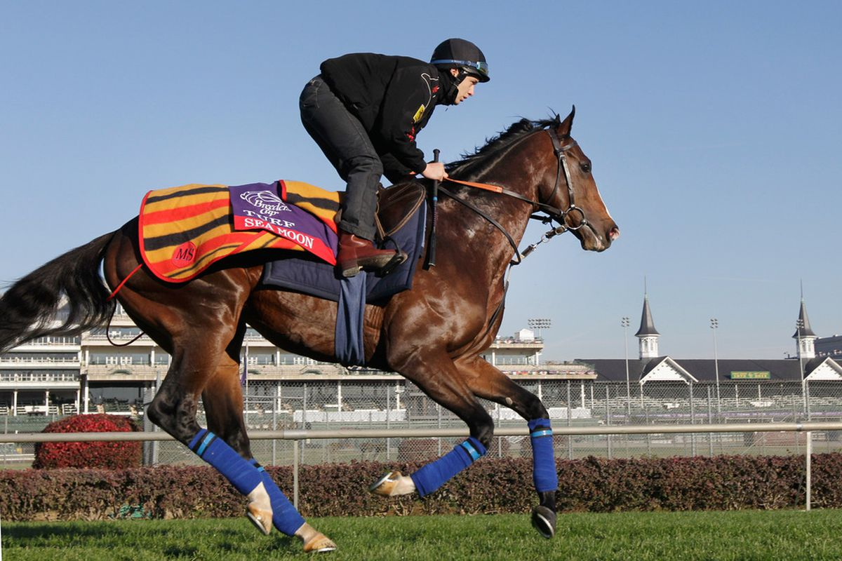 Breeders' Cup Turf contender Sea Moon was able to gallop over the turf course on Wednesday, but not on Thursday when rain prompted official to close the grass course, angering the connections of many of the European horses.