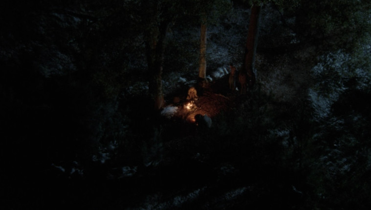 In a small clearing in the woods, there is a fire surrounded by stones. It is night.