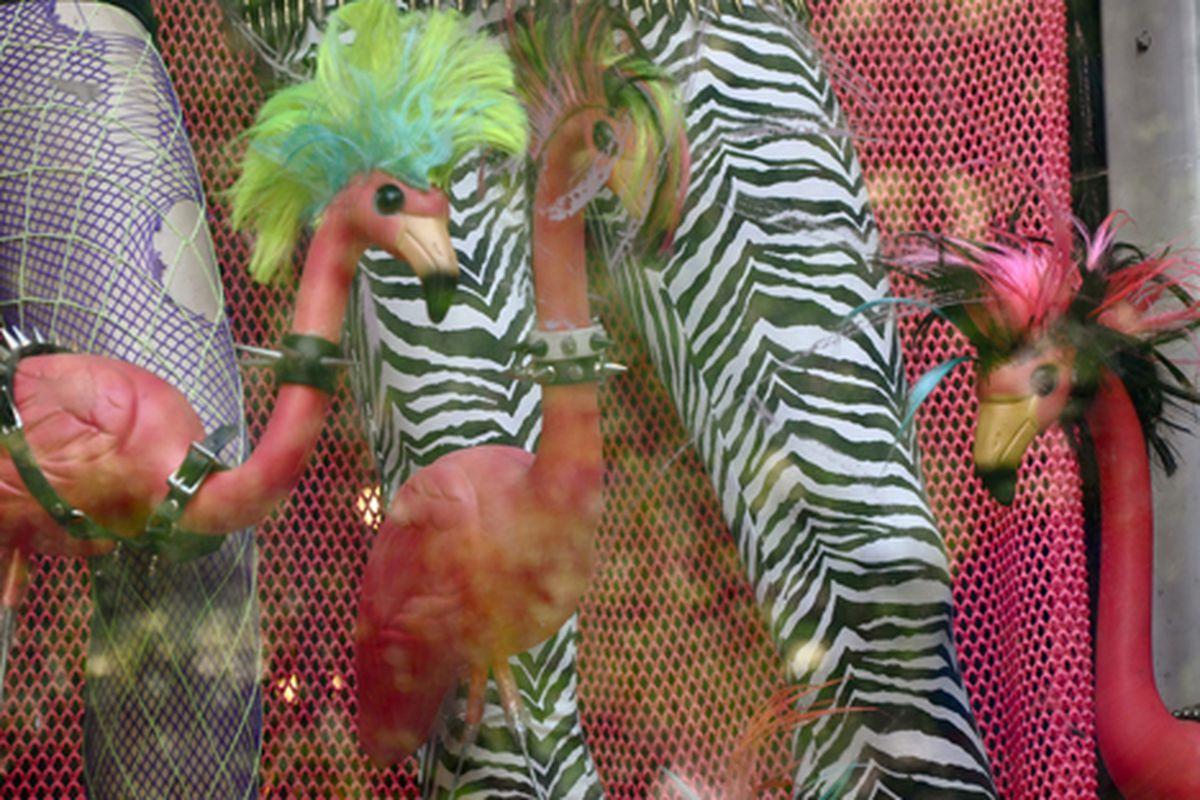 "Punk flamingos via <a href=""http://www.flickr.com/photos/essgee/4835489897/in/pool-312691@N20"">EssG</a>/Racked Flickr Pool"