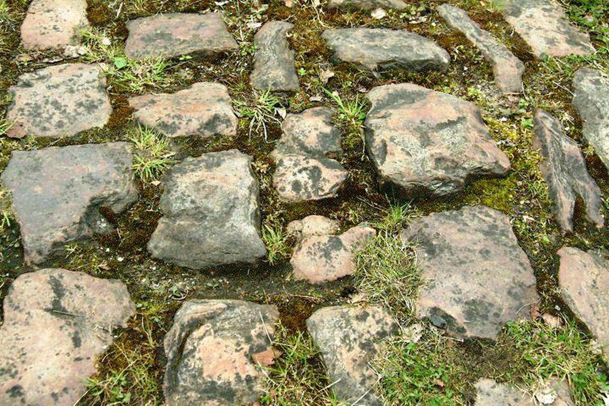 Arenberg cobbles