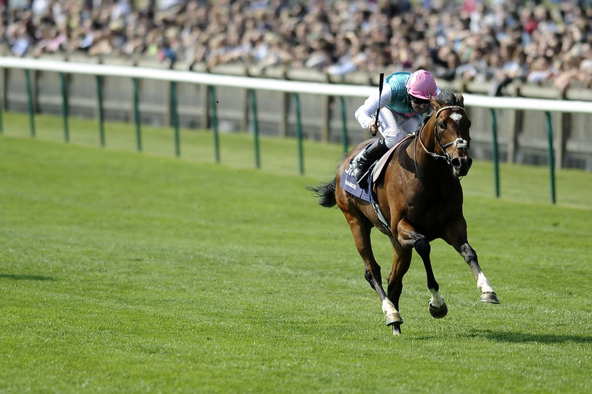 Frankel easily wins 8 furlong The Qipco 2000 Guineas Stakes by something like 7 furlongs. (Photo by Alan Crowhurst/ Getty Images)