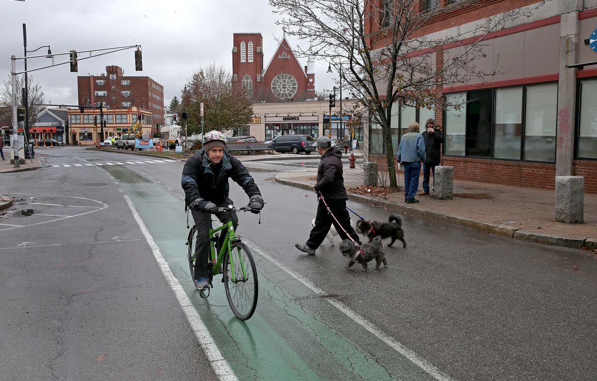 A biker going down a bike lane while a pedestrian walking two dogs walks behind him.